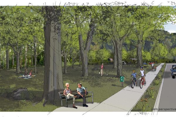 Park-Perspective Rendering